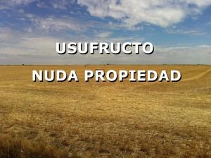 VALORACIÓN DE USUFRUCTOS Y NUDAS PROPIEDADES